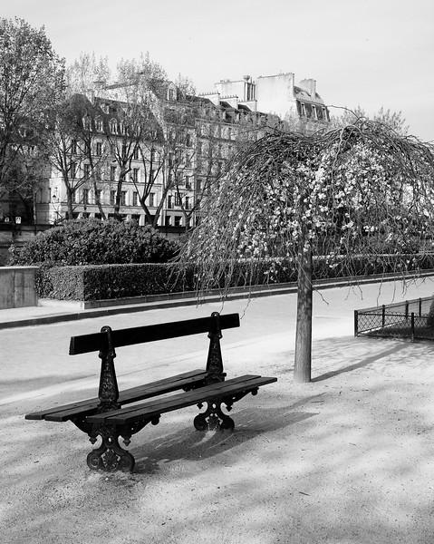 Paris Park Bench
