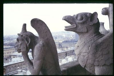 Gruesome pair, Gargoyles on North West Front