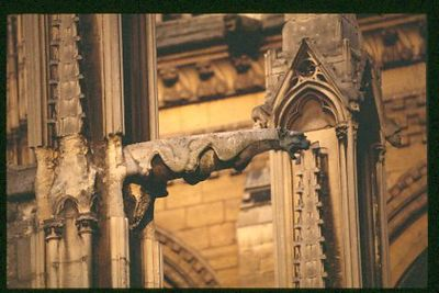 Low Gargoyle on North East side at dawn with 500mm lense