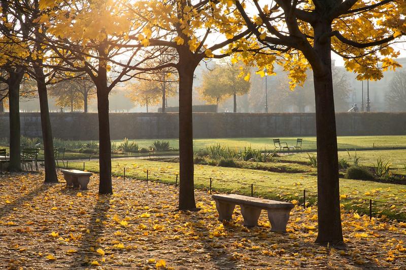 Paris Tuileries Early Light