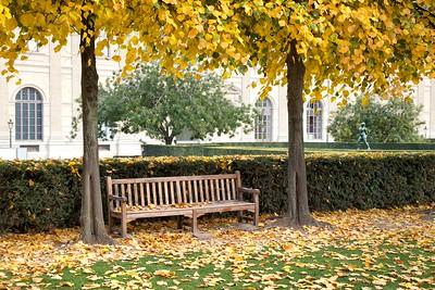 Paris Park Autumn