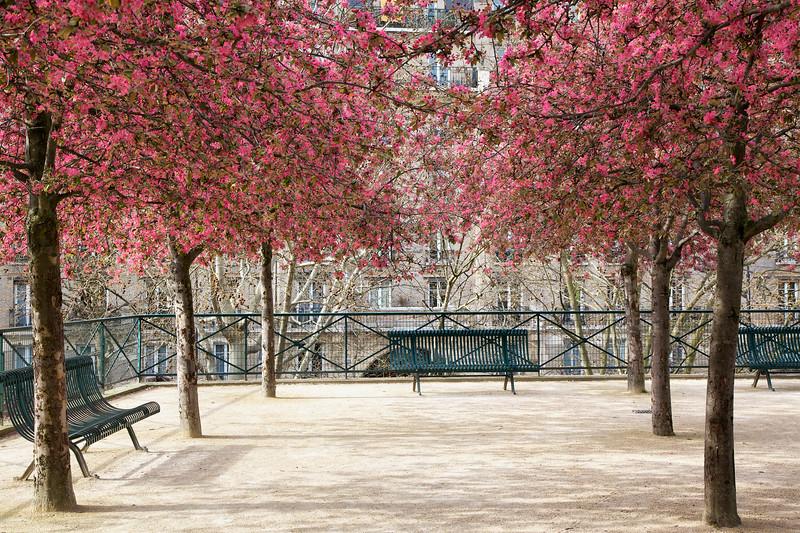 Paris Park Spring