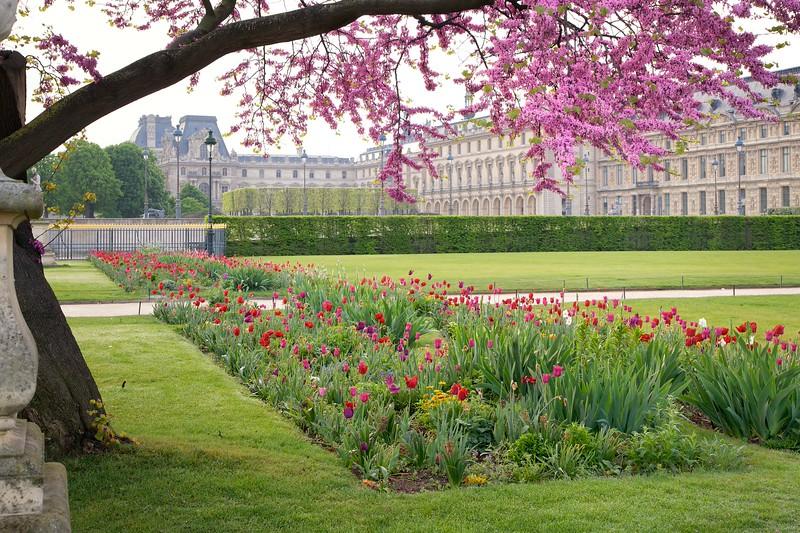 Paris Tuileries Spring