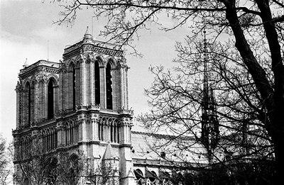 Notre Dame south west face