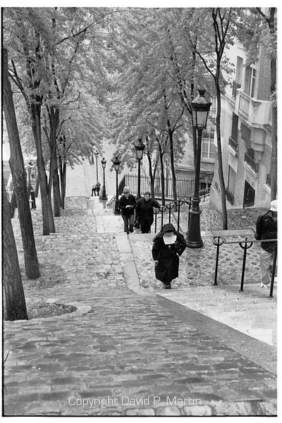 The steps of Rue Foyatier in Montmarte.