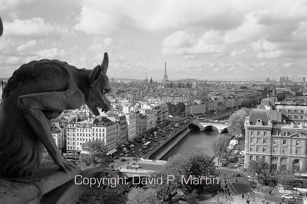 One of many gargoyles looks over the entrance to Notre Dame de Paris and all of Paris.