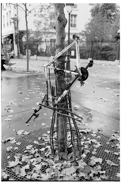 To protect against thieves, always lock your bicycle to something immovable.