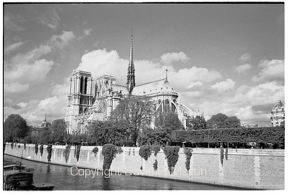 Notre Dame from across the Seine.