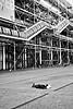 Fresh Air B&B at the Pompidou Center. (DG)