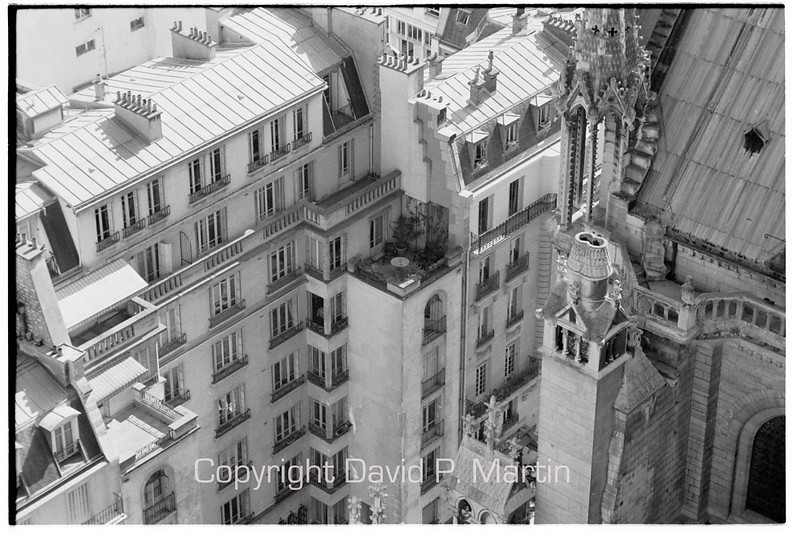 Location; location; location. A terrace in the shadow of Notre Dame.