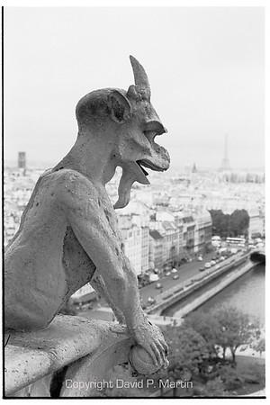 A gargoyle on Notre Dame de Paris.