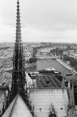 From the top of Notre Dame de Paris.