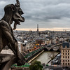 View from the top of Notre Dame Cathedral.