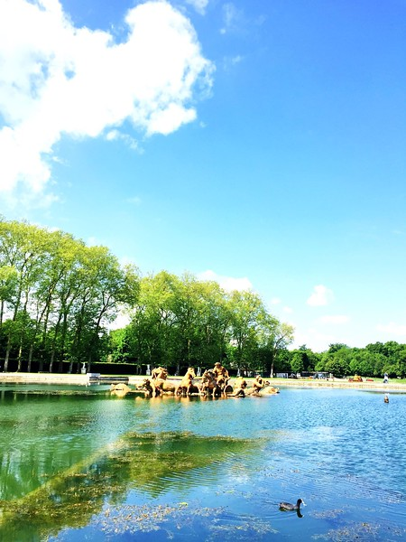 Versailles Gardens 3