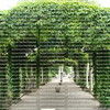 Green garden arches in Paris