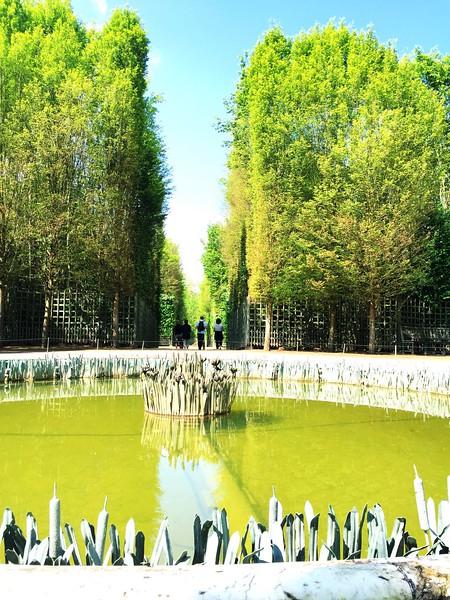 Versailles Gardens 6