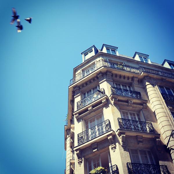 Balconies of Paris. 2016.