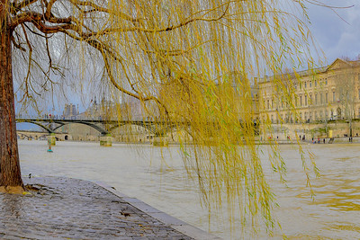 Weeping over the Seine