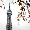Eiffel Tower in Autumn.