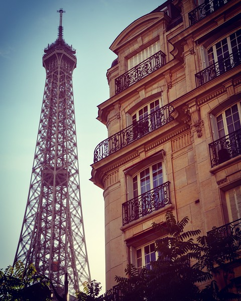 The Eiffel Tower. 2016.
