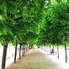 Palais Royal 1