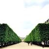 Palais Royal 2
