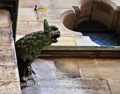 A Notre Dame Gargoyle