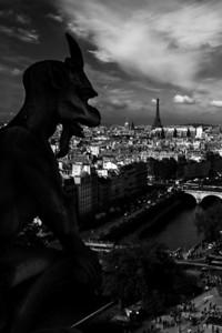 Paříž z Notre Dame