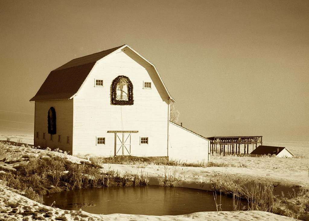 Synderville Barn, Sepia