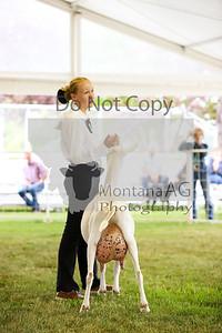 montana ag-14