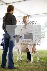 montana ag-10