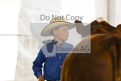 montana ag-17