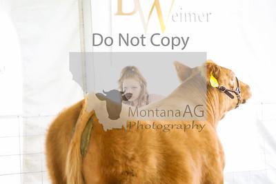 montana ag-1