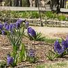 Parks w- Nico - Glen-34