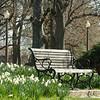 Parks w- Nico - Glen-39