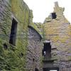 Dunnottar Castle - 018