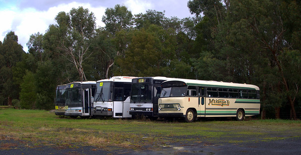 Trevors Bus Shed