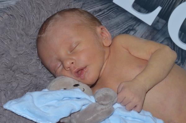 Parker's Newborn pics