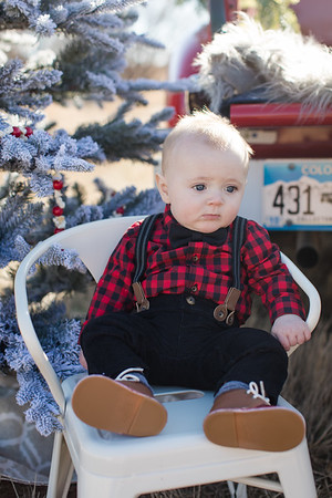 Parkin Christmas Mini-1