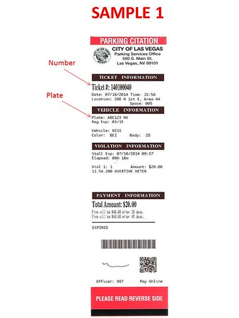 Parking Ticket Sample 1