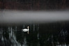 Durand Lake 120511 56 DSC_1261