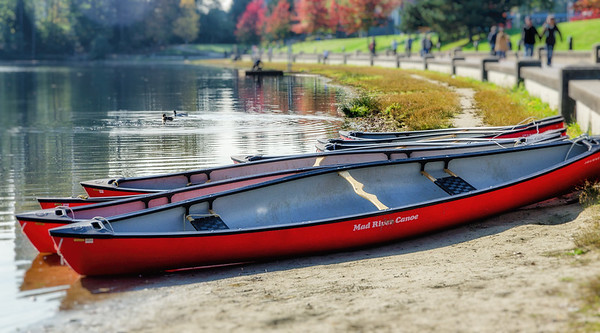 Mad River Canoe