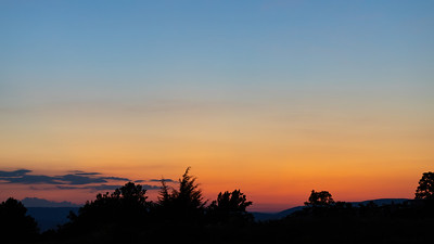 Saucy Sunset