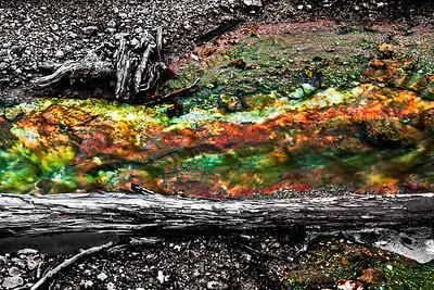 yellowstone12_4359_090612