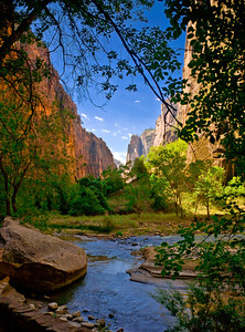 zionnarrows1451_8 5X11print