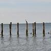 Three in a Row - Sandy Hook, NJ