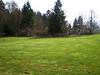 future site of future picnic shelter