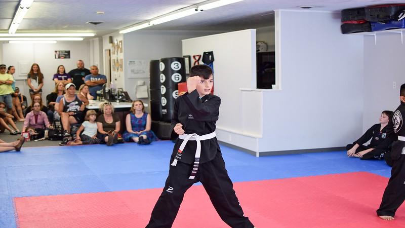 Park's Tiger Martial Arts - Video