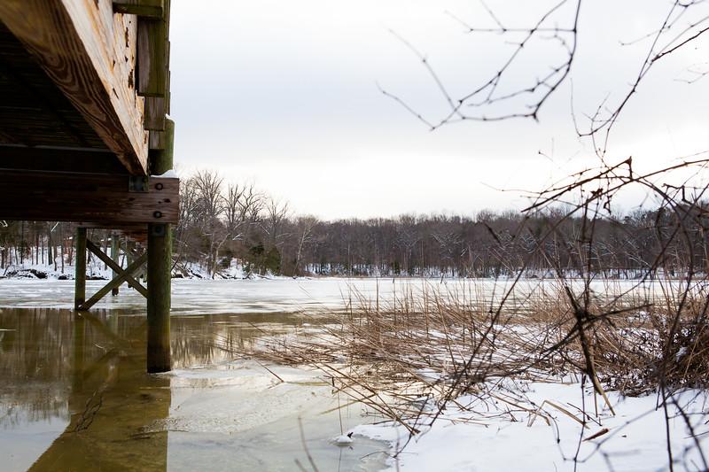 SmallwoodPark_JD_Winter_2015 (8)
