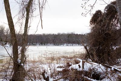 SmallwoodPark_JD_Winter_2015 (4)